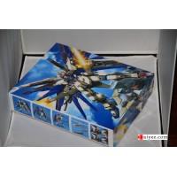 DRAGON MOMOKO GUNDAM MG 1/100 Freedom model kit